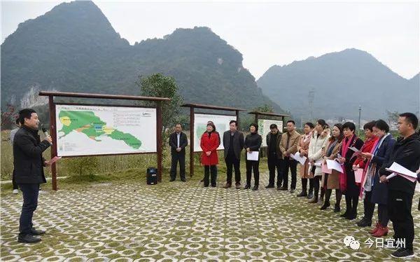 部分驻桂农村基层人大代表到宜州区调研