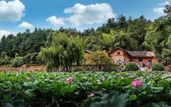 改革开放40周年 湘潭旅游40年变迁记