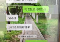 西安一医专学生患出血热死亡 校方:检测老鼠采样