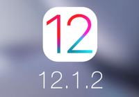 iOS 12.1.2数据网络bug临时解决方案:先禁用VoL