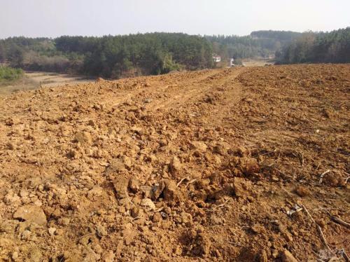 唐山市中心区2018年收储土地5540亩