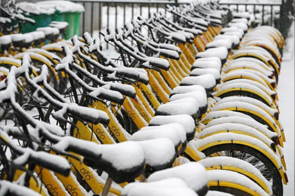 ofo迅速崛起又急速衰落 共享单车真的是愚蠢业务吗
