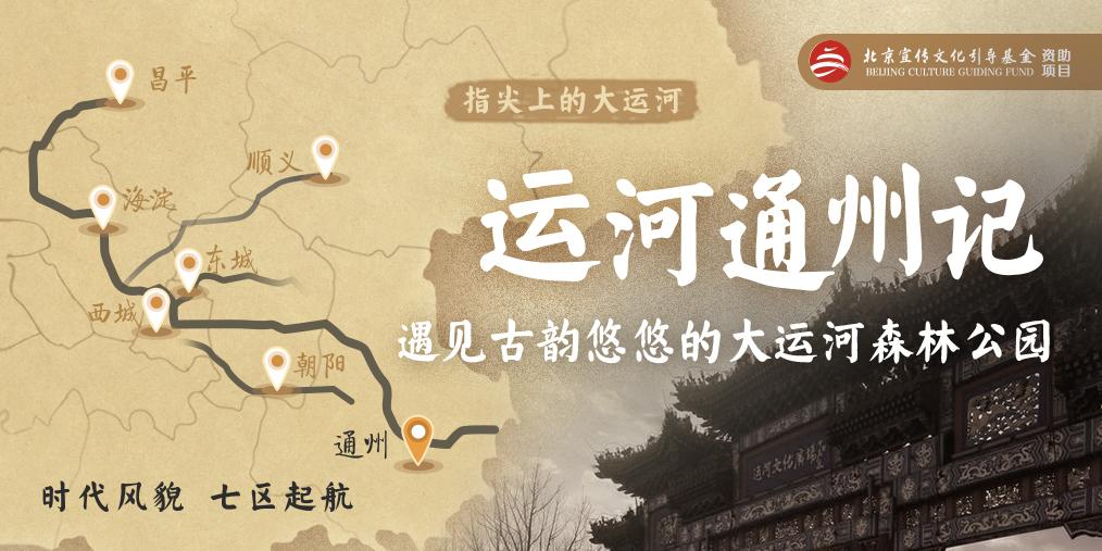 运河通州记丨遇见古韵悠悠的大运河森林公园