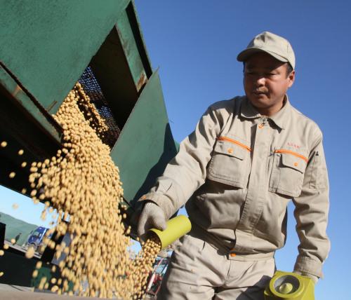 图为大豆丰收。新华社