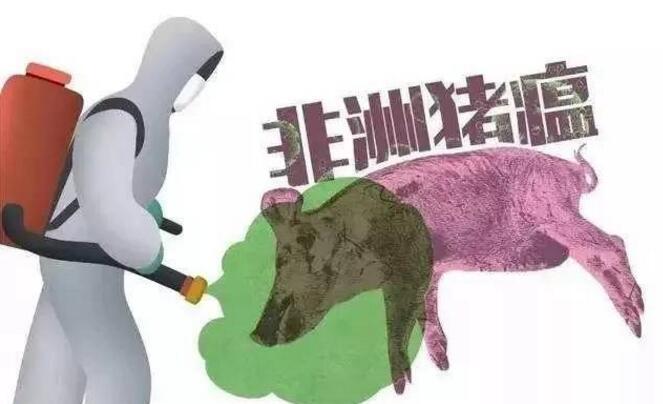 惠州排查出首例非洲猪瘟疫情 及时采取有效措施控制