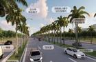 椰海大道延长线