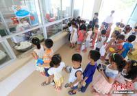 教育部:3700万名农村学生吃上免费营养餐