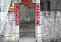 被家暴的童年:深圳虐童事件调查