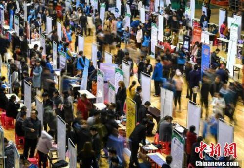 资料图:民营企业走进高校寻英才。中新社记者 刘新 摄