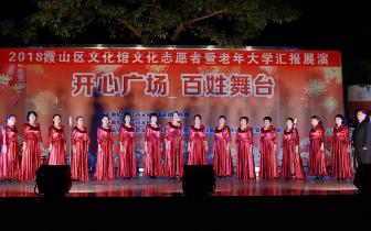 文化志愿者和老年大学汇报展演受欢迎