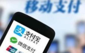 渝湛(粤境段)、湛徐高速36条车道开启移动支付