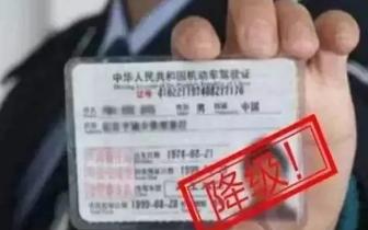 粤S车逾期年审会被记3分?举报车辆违法可加分?