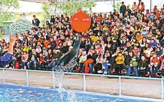 重庆旅游发展速度全国领先