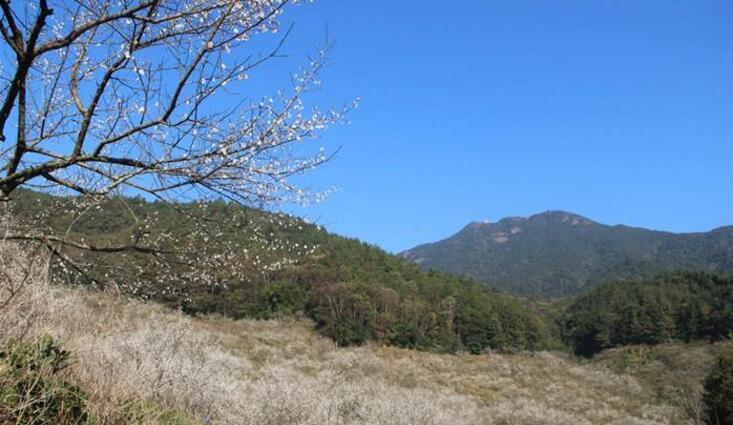 惠东梁化国家森林公园获评3A景区