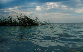 江西投19.4亿元治理水污染 水质优良率90.7%