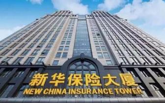 新华保险盘中触及跌停 公司:正筹划董事会换届