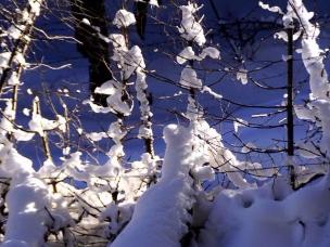 呼图壁等你 在这个飘雪的季节