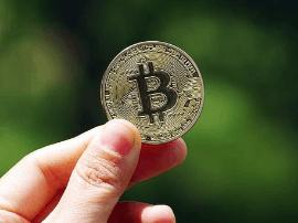 比特币8年暴涨300万倍 17世纪的郁金香泡沫?