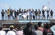 印度颁布斗牛禁令引发抗议