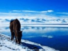 去西藏旅游,住宿篇疑问解答!