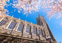 美国也有学术造假:杜克大学造假或需赔偿40亿
