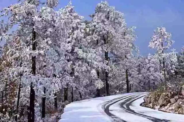 天然氧吧——大石柱的雪景等你来鉴赏