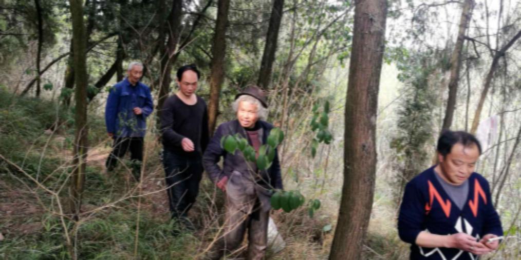 6旬老人独居树林1年 安岳民警助其回家