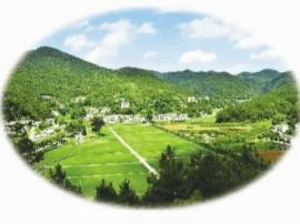 河津城区居委会城中村区域环境卫生实行网格化管理