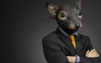 又一起老鼠仓:信达澳银基金经理携妻子盈利400万
