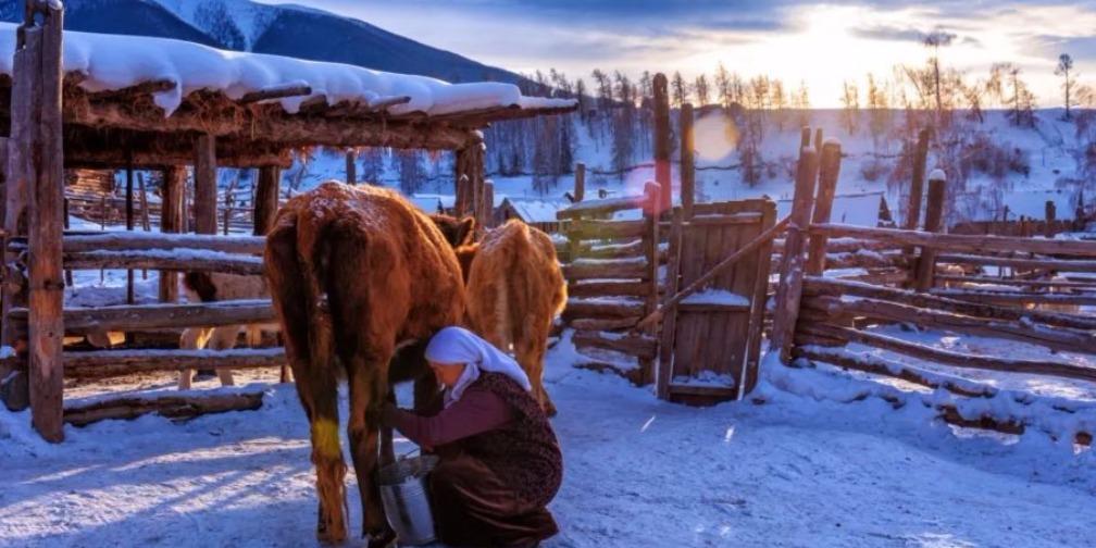 白哈巴:阿尔泰山中的云间部落