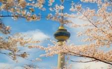 北京蓝天白云开启清明假期模式