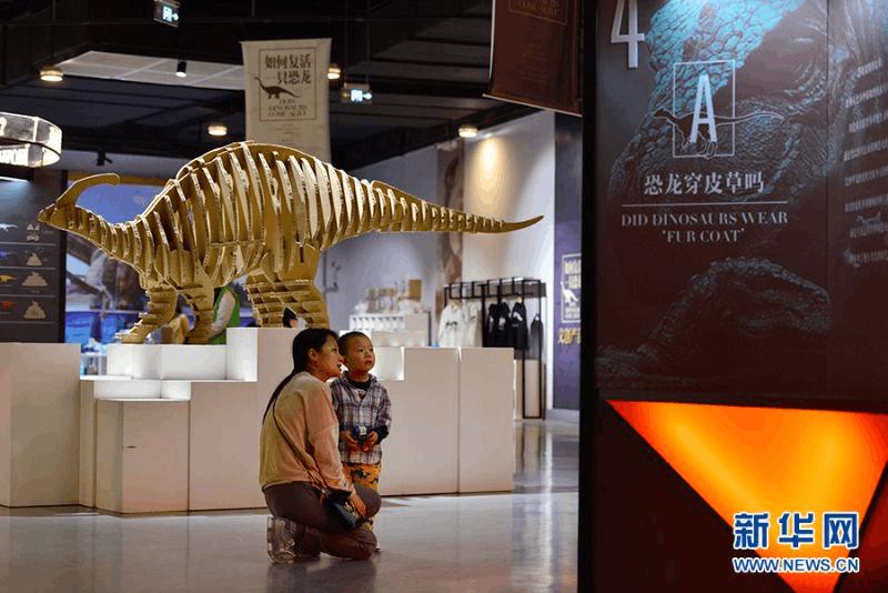 """国庆中秋双节 到重庆自然博物馆看""""如何复活一只恐龙"""
