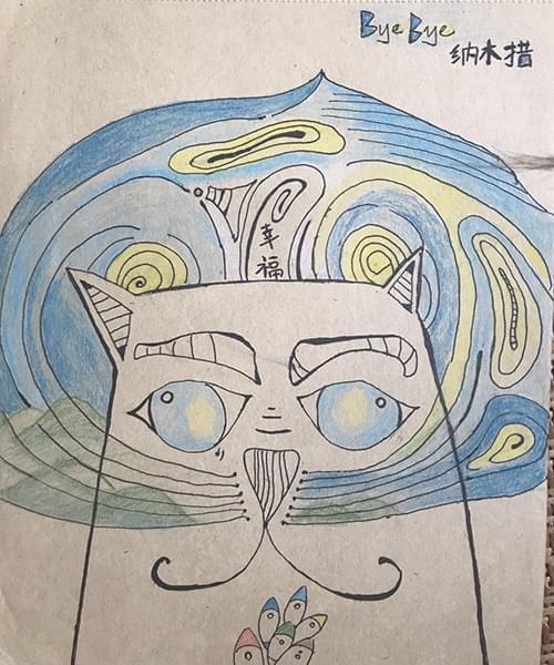 一天,我在朋友圈发了一张手绘的漫画,把纳木措湖画成了一只猫的脸。(作者供图)