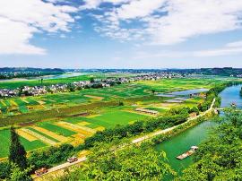 潼南区委书记曾菁华: 融合产业优势 推动经济发展质量