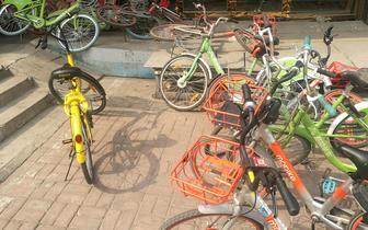 共享单车管理欠缺 一年后乱停现象仍未改善