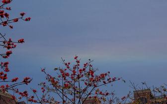 """福州天空现""""火焰彩虹"""" 专家:环地平弧较为少见"""