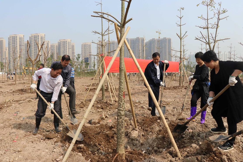 佛山今年有望新增绿化面积2.6万亩,助建高品质森林城