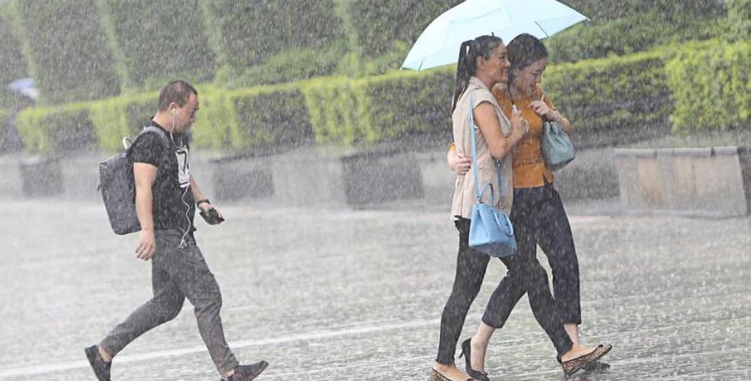 """这场消暑的""""太阳雨""""深圳人你享受到了吗?"""