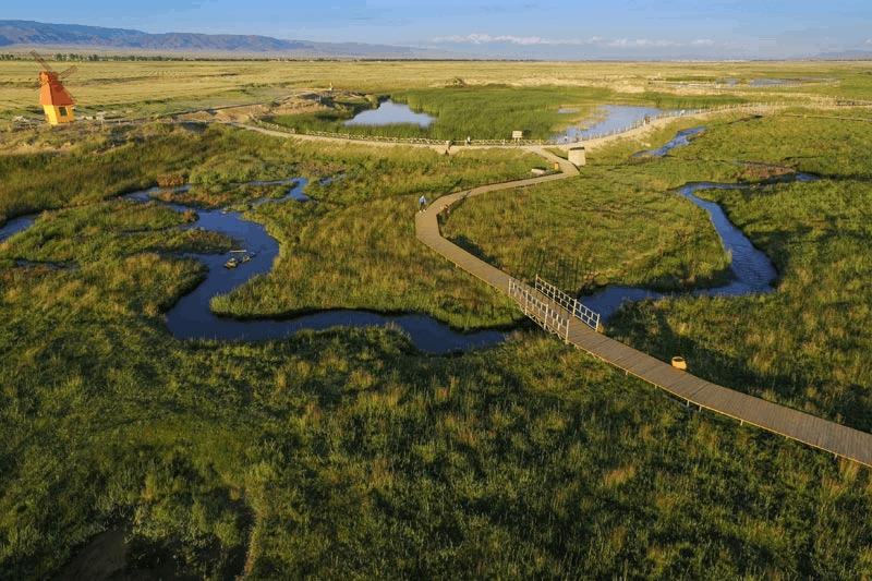 新疆哈密的高家湖湿地公园 风景怡人