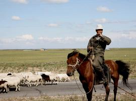 这个秋天 你可以开着房车穿越内蒙古草原!