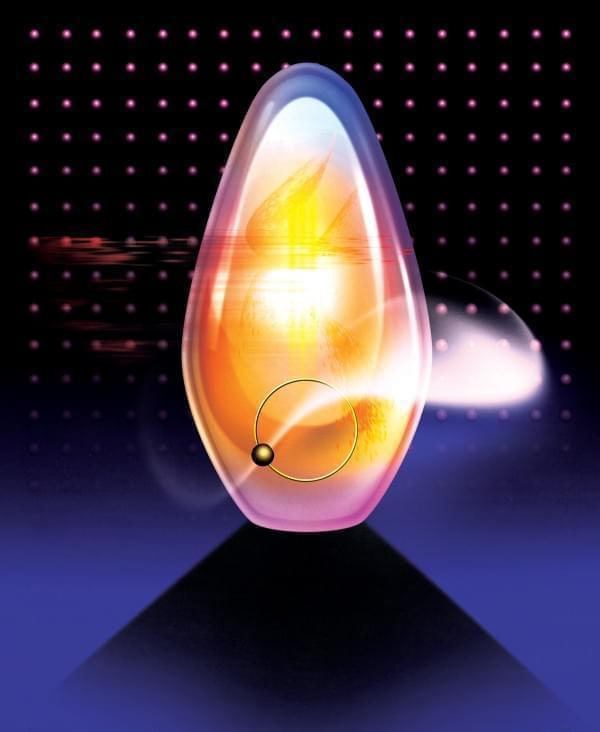 探秘人造精子卵子:当皮肤细胞能变成生殖细胞
