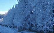 美翻了有木有 九宫山迎来2018年首场雪