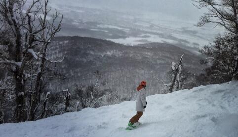 夏雨滑雪受伤 没有中医只能望雪兴叹