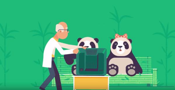 轻松一刻4月6日:为了拯救大熊猫,色情网站这招绝了!