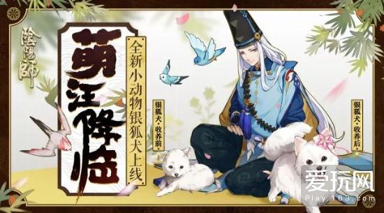 可爱暴击 萌宠降临 《阴阳师》全新小动物银狐犬登场