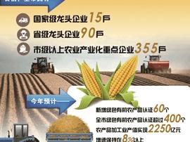 长春向世界级农产品加工基地迈进