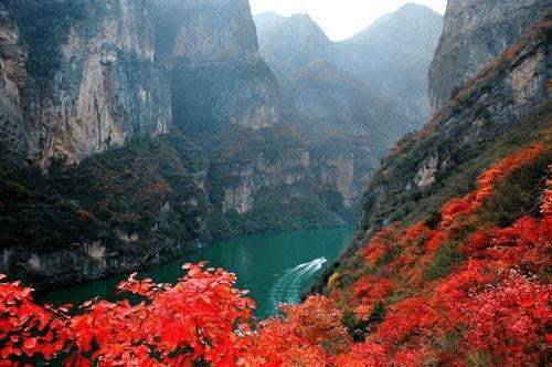 秋天来了怎么耍 来重庆泡温泉赏红叶品秋果尝新米