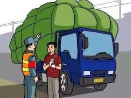 """邯郸一司机一年违法336次成""""违法大王""""!"""