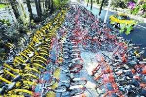 广州叫停新投放共享单车 旧车乱停将清理!