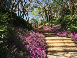 恒大山水城:走近幸福 醇美园林不负生活